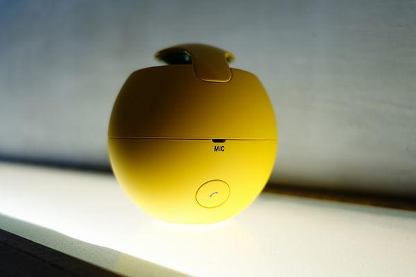 Sony SRS BTV5 FIFA speaker price