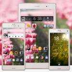Try out Xperia Spring & Valentine's Day Theme