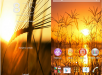 Xperia Sunset Theme