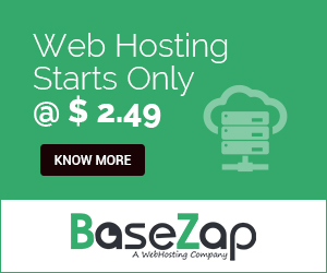BaseZap Hosting